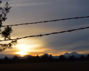 Barbwire and mountains